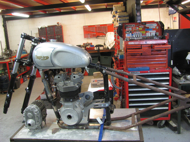 Triumph engine on a rigide lowbrow frame